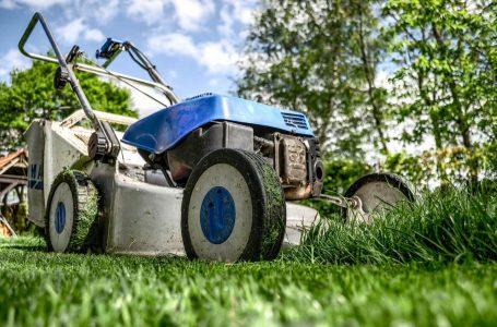 Beste grasmaaiers
